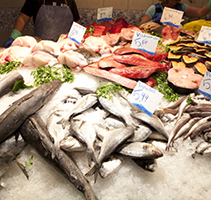Fresh fishes in a market in Barcelona